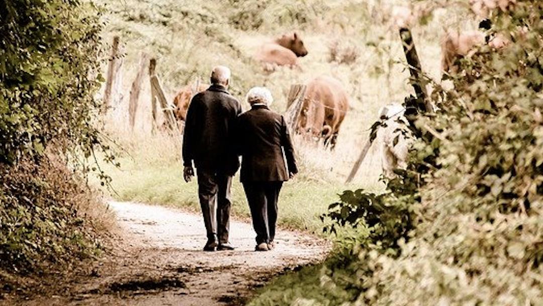 Pensions de retraites